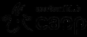 logo-without_background